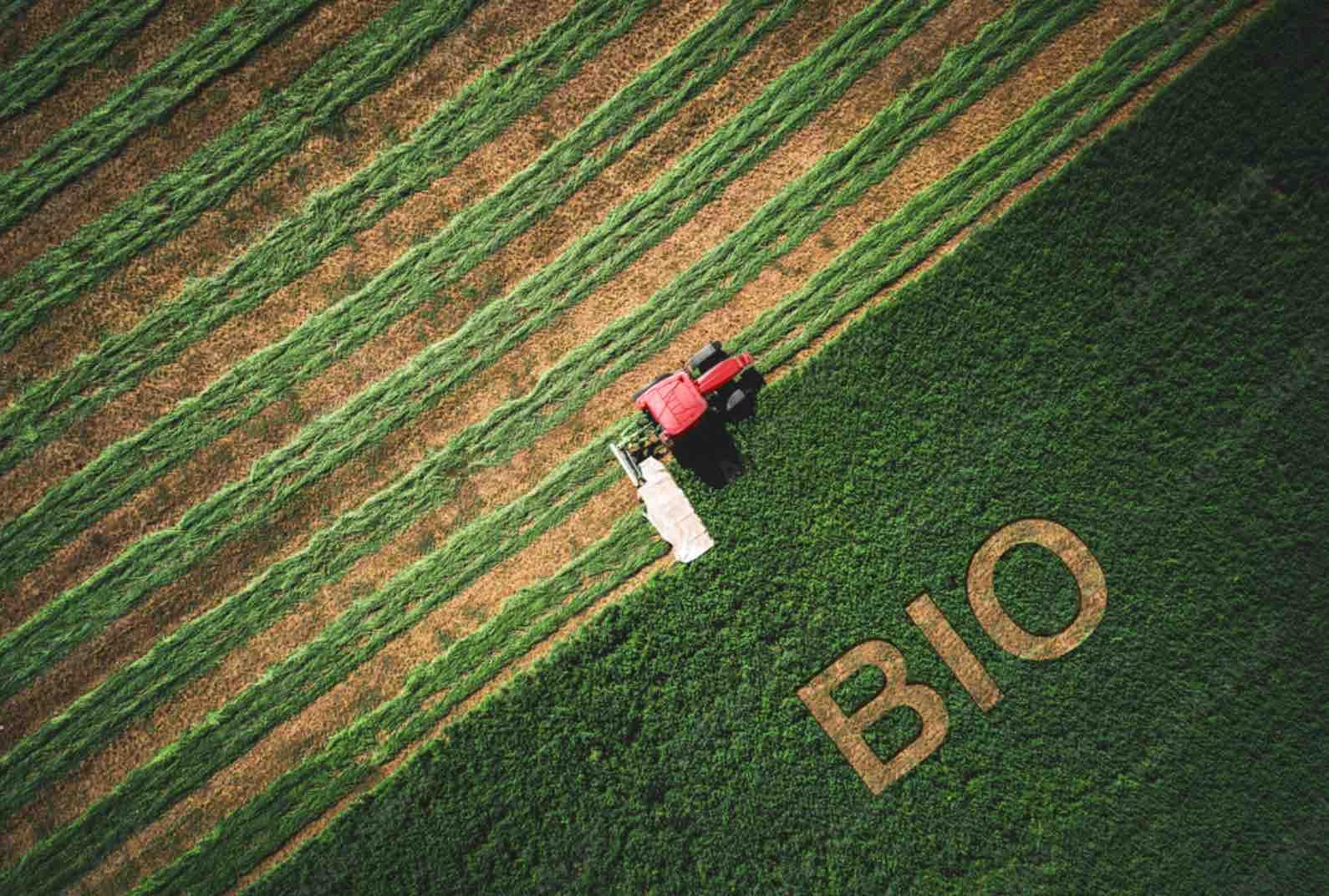 Kerhis et la croissance du bio